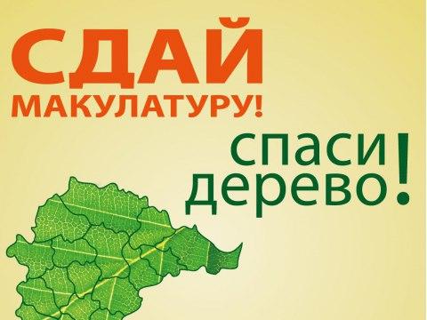 Сбор макулатуры на восстановление леса
